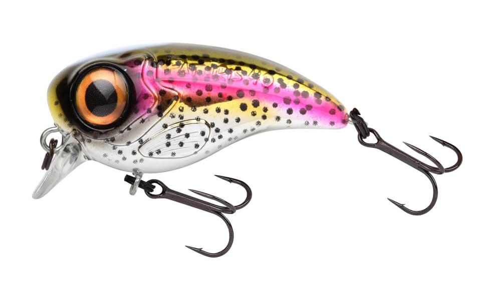 Fat Iris - Colours - Rainbow Trout