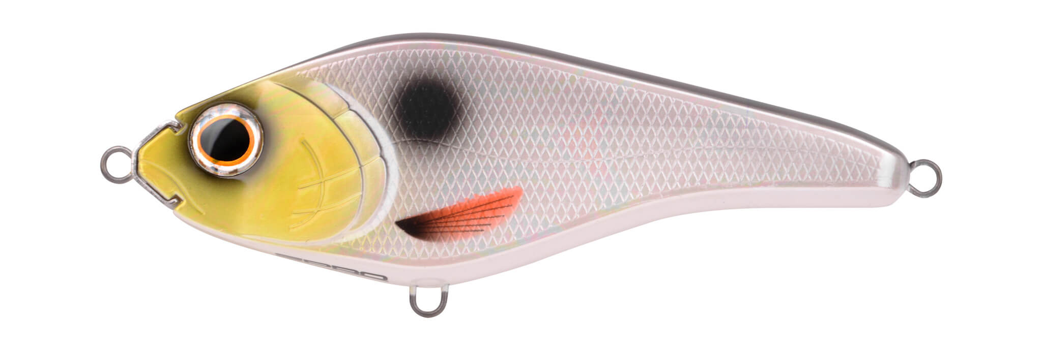 Blog - The Rapper - UV Silverfish
